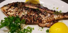 Fresh whole sea bass at Andrew's Open Pit & Spirits in Park Ridge